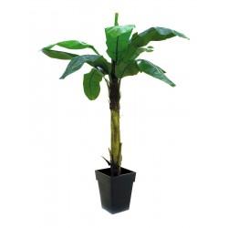 Drzewo bananowe 220cm