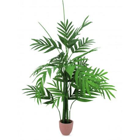 Palma Areka 230cm