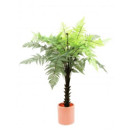 Woodwardia tree 180 cm